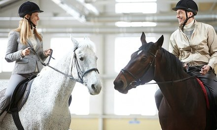 Up to 58% Off on Horse Back Riding - Training at Centro Ippico Orzoni